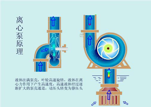 离心泵原理.jpg